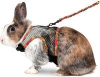 Postroj králík L