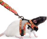 Postroj návlek potkan S