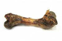 Sušená kost č.5