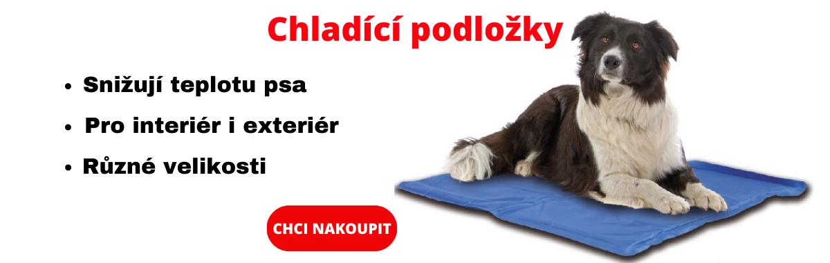 banner novy eshop (1).png